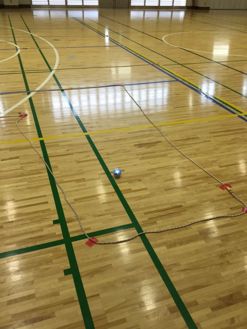 プログラミングをした球体のロボットを動かしています